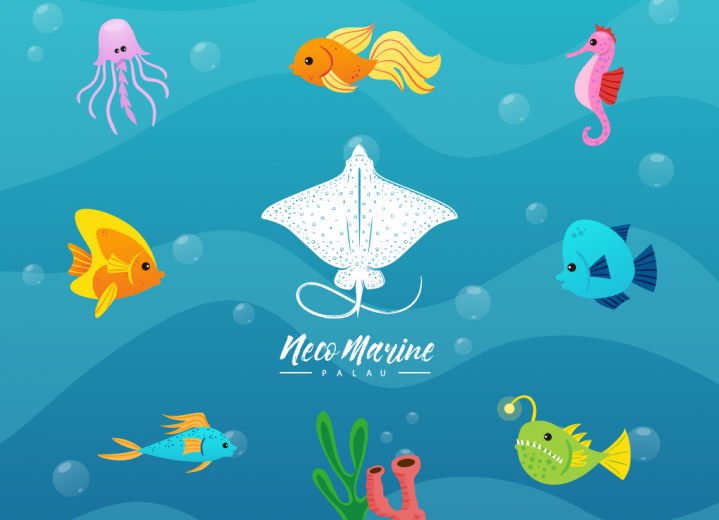 Neco Marine Palau flat illustration